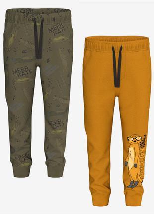 Утепленные спортивные штаны рерсо.