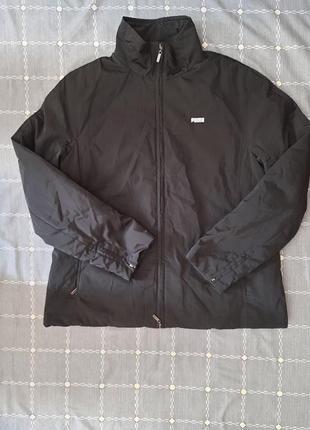 Куртка. ветровка
