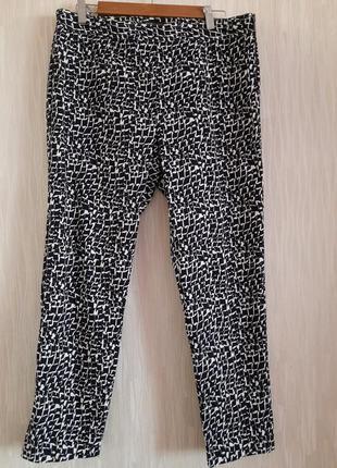 Брюки, штаны  новые коттоновые 14/42 размера