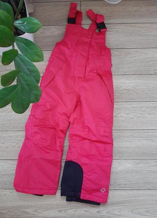 Лижні штани lupilu