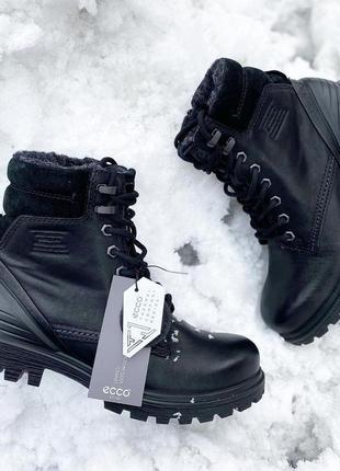 Женские зимние ботинки ecco tred tray на шерсти
