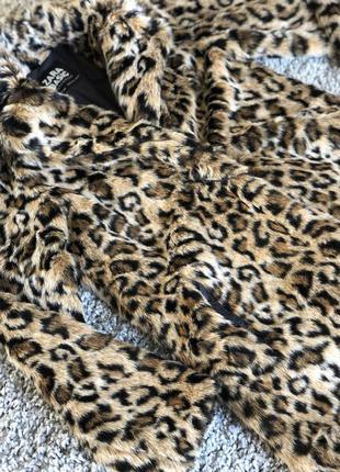Гладкая леопардовая шуба zara