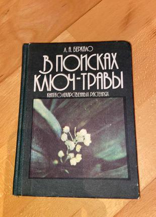 Книга беркало людмила - в поисках ключ-травы