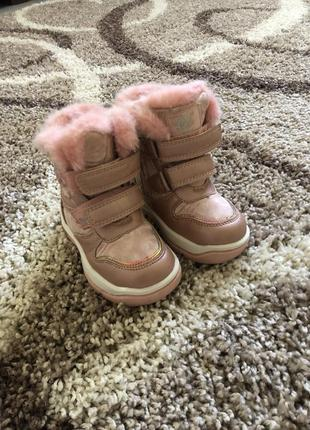 Сапожки,ботинки
