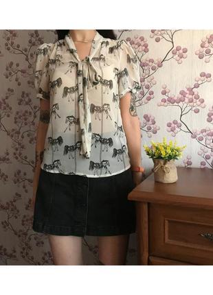 Красивая блуза под dorothy perkins 8/36/s