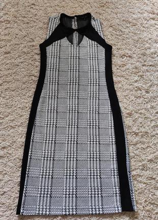 Плаття cassidi