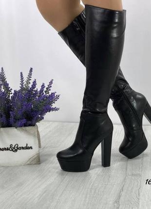 Женские осенние сапоги на каблуке и платформе