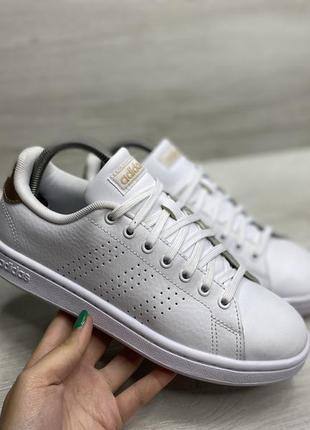 Жіночі кросівки adidas advance shoes
