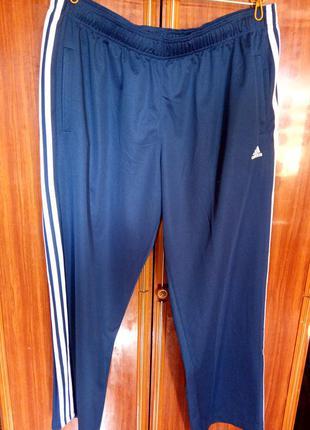 Спортивные штаны,размер 3xl-6xl