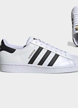 Кроссовки adidas superstar white black белые женские