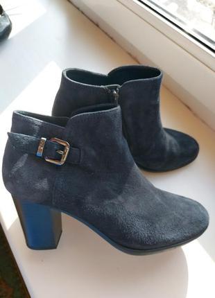 Замшевые ботинки на каблуке сапожки ботильоны кожаные