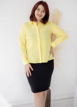 Класична блуза size+ з супатною застібкою 3321