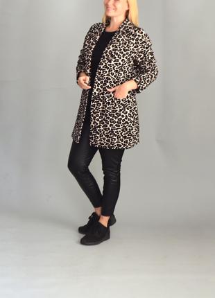 5344\265 леопардовый пиджак next xl