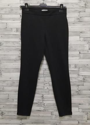 Темно-серые брюки штаны по фигуре carolina belle