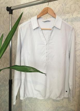 Біла блузка белая блузка с длинным рукавом блуза