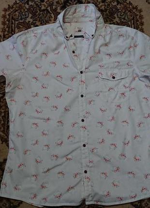 Фірмові англійська бавовняна рубашка сорочка next,розмір xl-xxl.