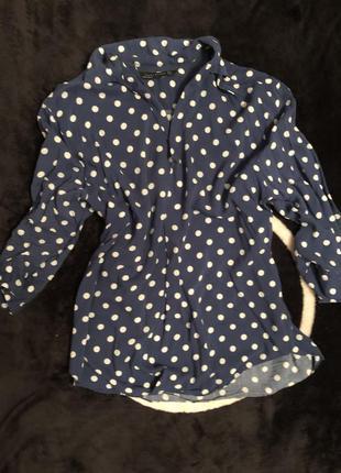Блузка рубашка синяя в горох zara