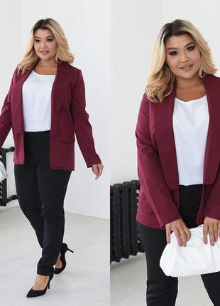 Костюм-двойка в офисном стиле пиджак и брюки размеры 46-48,50-52,54-56  (70664)