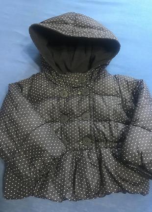 Куртка / курточка / деми