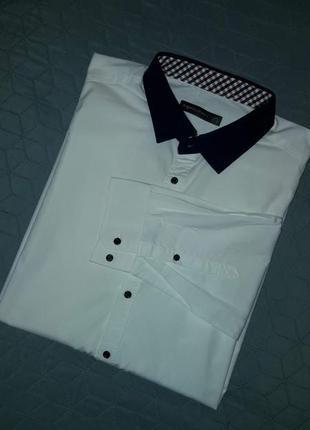 Рубашка/хлопок/regular