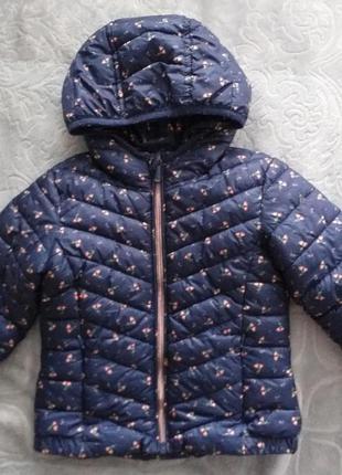 Куртка демисезонная демісезонна ветровка вітровка