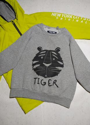 Свитшот толстовка тигр next р. 3-4