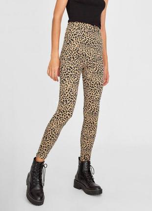 Леопаровые джинсы с высокой талией