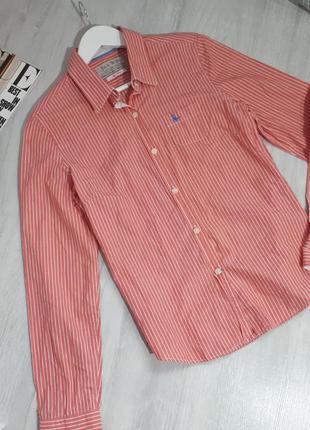 Женская рубашка в полоску. базовая рубашка jack wills оригинал