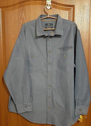 Мужская рубашка размера 56.