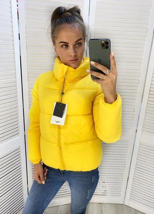 Жіночий пуховик куртка демі осінь