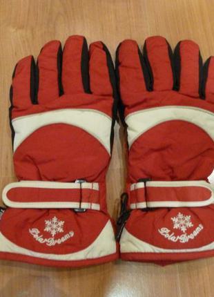 Лыжные горнолыжные сноубордические перчатки polar dreams.