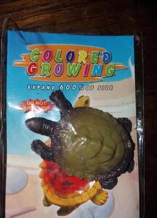 Растущее животное черепаха