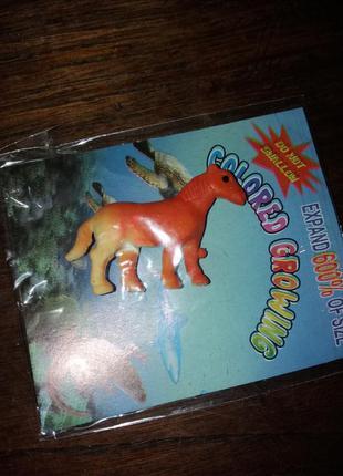 Растущее животное конь лошадь