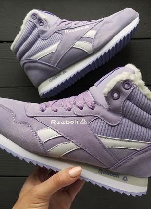 Зимові фіолетові кросівки / зимние фиолетовые кроссовки