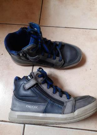 Демисезонные ботинки geox