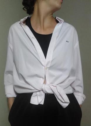 Рубашка блузка блуза оверсайз белая свободная прямая классика базовая  хлопок полоска