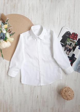 Белоснежная рубашка palomino