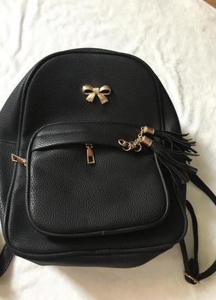 Рюкзак чёрный с двумя отделениями кож зам