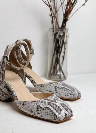 Туфли с квадратным мысом из натуральной кожи питон на низком каблуке 6см