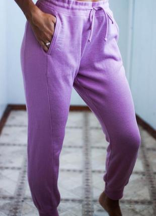Утепленные спортивные штаны hollister