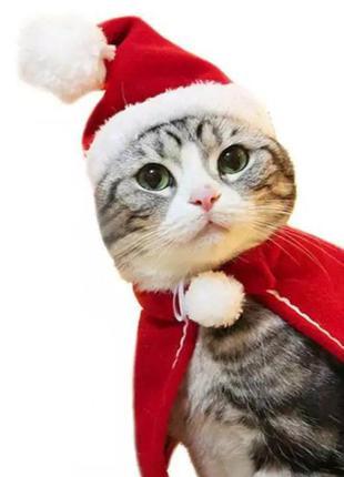 Шапка деда мороза, новогодняя шапка, рождественская шапка для животных