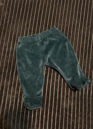 M&s collection ползунки штанишки штаны