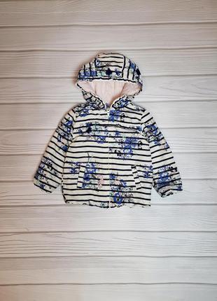 Ветровка курточка куртка деми осень