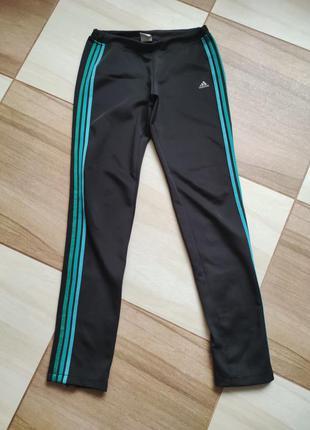 Спортивні штани adidas жіночі