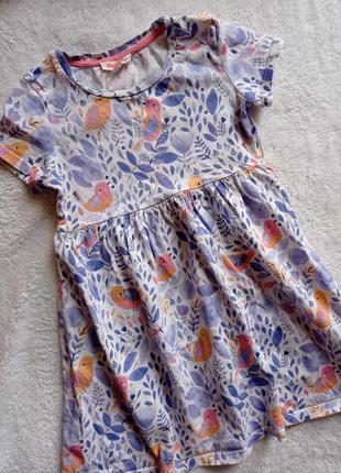 Bluezoo котонове плаття на вік 4-5р.