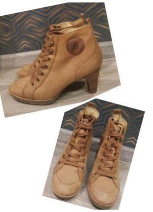 Ботинки на шнуровке натуральная кожа paul green