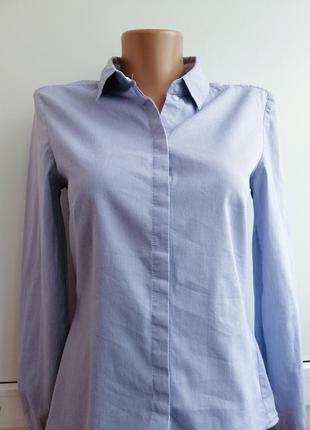 Блуза белая голубая в полосочку
