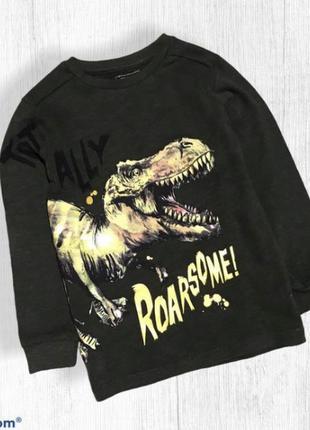 Next плотный реглан лонгслив динозавр на мальчика 5 лет 110 см