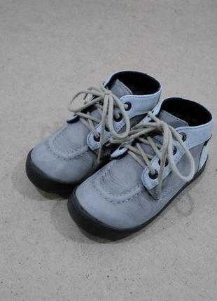 Термо ботинки kickers кожаные для мальчика