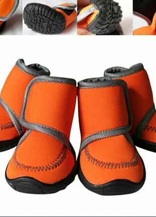 Ботинки для собаки, обувь xs, водонепроницаемые